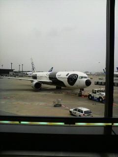 パンダ飛行機
